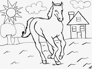 Pferdebild über fiverr