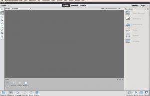 Schnell-Ansicht von Photoshop-Elements